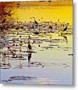 Sunset On Parry's Lagoon Metal Print