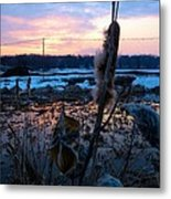Sunset On The Pond Metal Print