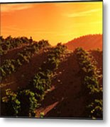 Sunset Over The Valley Metal Print