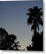 Sunset Palm Metal Print
