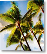 Sunset Palm Trees Metal Print