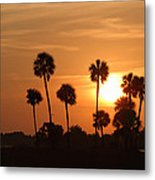 Sunset Palms 1 Metal Print by Roger Snyder