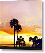Sunset Panorama Metal Print