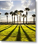 Sunset Sentinels Metal Print