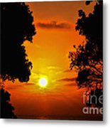 Sunset Silhouette By Diana Sainz Metal Print