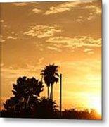 Sunset Sillouette Metal Print