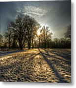 Sunset Snow Trees Metal Print