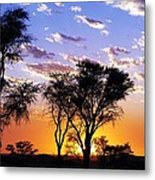 Sunset Splendour Metal Print by Liudmila Di
