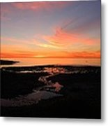 Field River, Hallett Cove Metal Print