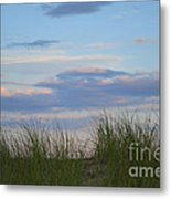 Sunset Through Grass Metal Print