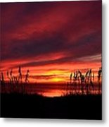 Sunset Through The Sea Oats Metal Print
