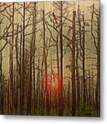 Sunset Thru The Pine Barrens Metal Print