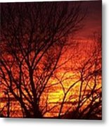 Sunset Tree Metal Print
