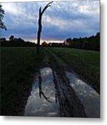 Sunset Treeflection Metal Print