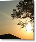 Sunset Under The Tree By The Water Metal Print
