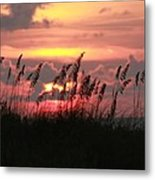 Sunset With Sea Oats Metal Print