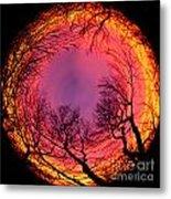 Sunset World Of Trees Metal Print