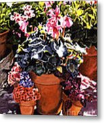 Sunshine And Flowerpots Metal Print