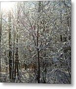 Sunshine And Snow Metal Print