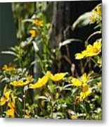 Sunshine Flowers 2 Metal Print