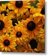 Sunshine On A Stem Metal Print