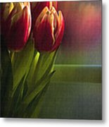 Sunshine On My Window Metal Print by Cindy Rubin