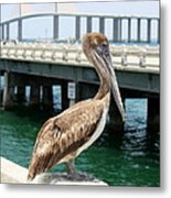 Sunshine Skyway And Pelican Metal Print