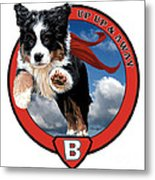 Super Berner Metal Print