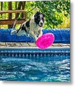 Super Dog 2 Metal Print