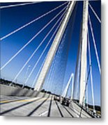 Supports Metal Print