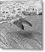 Surf And Wings Metal Print