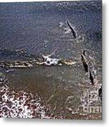 Surfing In Historys Shadow Metal Print