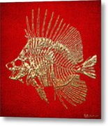 Surgeonfish Skeleton In Gold On Red  Metal Print