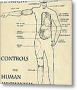 Surgery Controls The Human Mechanism   1906 Metal Print