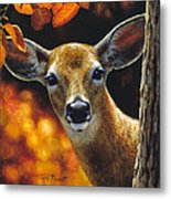 Whitetail Deer - Surprise Metal Print by Crista Forest