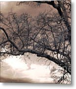 Surreal Fantasy Gothic South Carolina Oak Trees Metal Print by Kathy Fornal