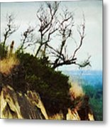 Surviving On The Cliff Top  Metal Print