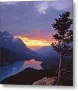 1m3607-sunset Over Peyto Lake Metal Print