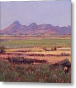 Sutter Buttes In Summer Afternoon Metal Print