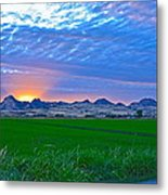 Sutter Buttes Sunset Ray Burst In The Rice Fields  Metal Print