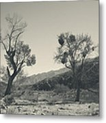 Suvival Can Be Tough Metal Print