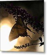 Swallowtail Light Metal Print