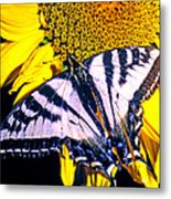 Swallowtail Sunflower Metal Print