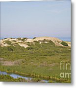 Swamp And Dunes Metal Print