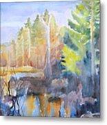 Swamp Color Metal Print by Grace Keown