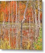 Swamp Colors Metal Print
