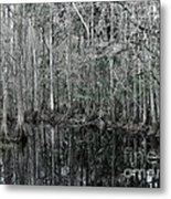 Swamp Greens Metal Print