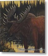 Swamp Moose Metal Print