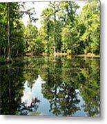 Swampland Reflection At The Plantation Metal Print