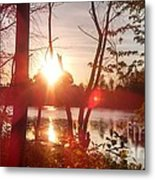 Swampy Sunset #1 Metal Print